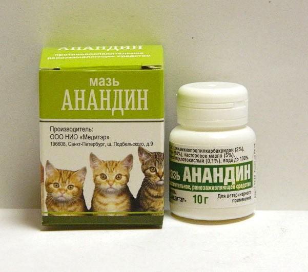 анандин кошкам
