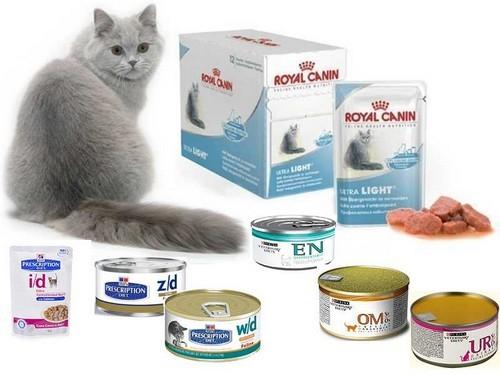 Лечебные консервы для кошек – вкусное лекарство