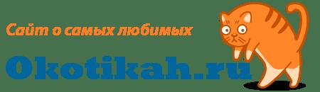 okotikah.ru