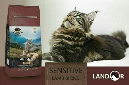 Корм для кошек Ландор