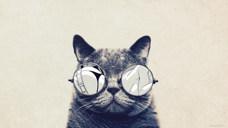 самая умная порода кошек