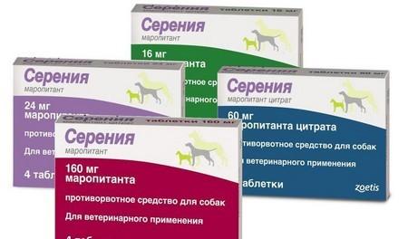 Таблетки Cerenia для кошек