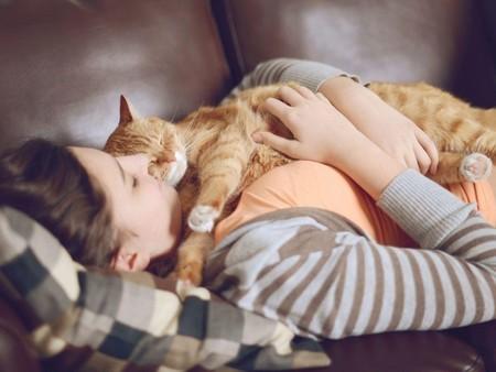 Котенок спит на хозяйке