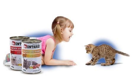 Корм Онтарио для котов