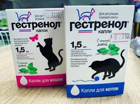 Гормональные препараты для кошек