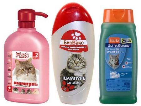 Виды шампуней для котов